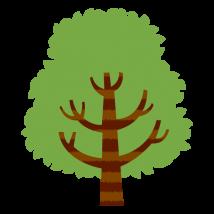 f_tree1052